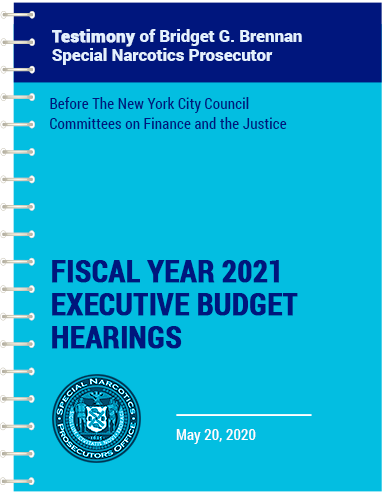 vector blue spiral notebook with Bridget's testimony of the fiscal year 2021 executive budget hearings
